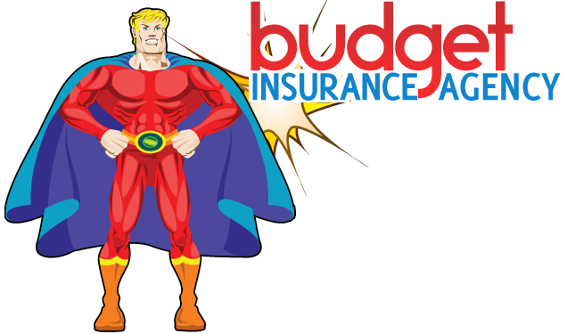 Budget Insurance Agency